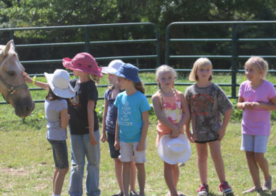 Boy/Girl Scouts & 4H Camps